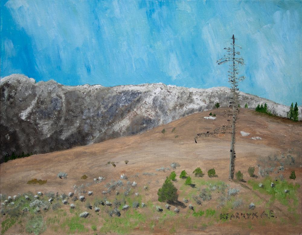 """Картина - """"Сосна в горах"""""""